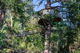 Photo 91: 230 Smith Rd in : GI Salt Spring House for sale (Gulf Islands)  : MLS®# 885042