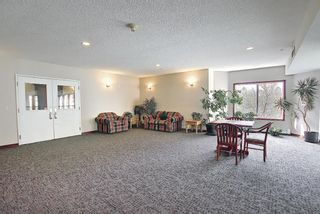 Photo 27: 202 1920 14 Avenue NE in Calgary: Mayland Heights Apartment for sale : MLS®# A1106504