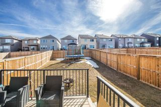 Photo 28: 459 Nolan Hill Drive NW in Calgary: Nolan Hill Detached for sale : MLS®# A1085176