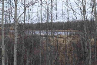 Photo 10: Twp 510 RR 33: Rural Leduc County Rural Land/Vacant Lot for sale : MLS®# E4239253