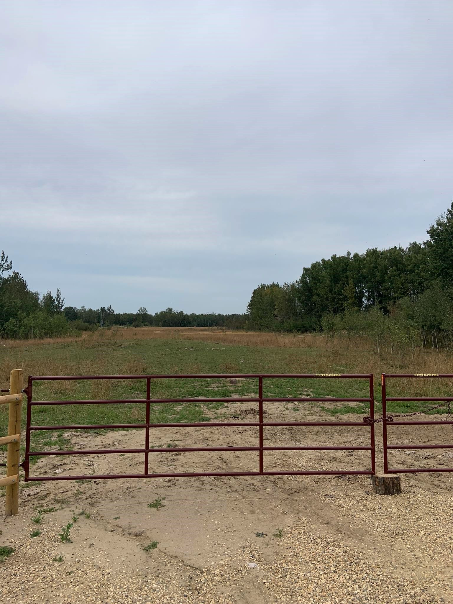 Main Photo: RR 275 Twp 482: Rural Leduc County Rural Land/Vacant Lot for sale : MLS®# E4261137