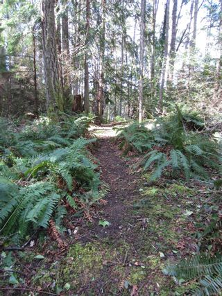 Photo 94: 1966 Gillespie Rd in : Sk 17 Mile House for sale (Sooke)  : MLS®# 878837