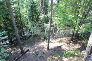 Photo 21:  in : Anglemont House for sale (North Shuswap)  : MLS®# 10239335