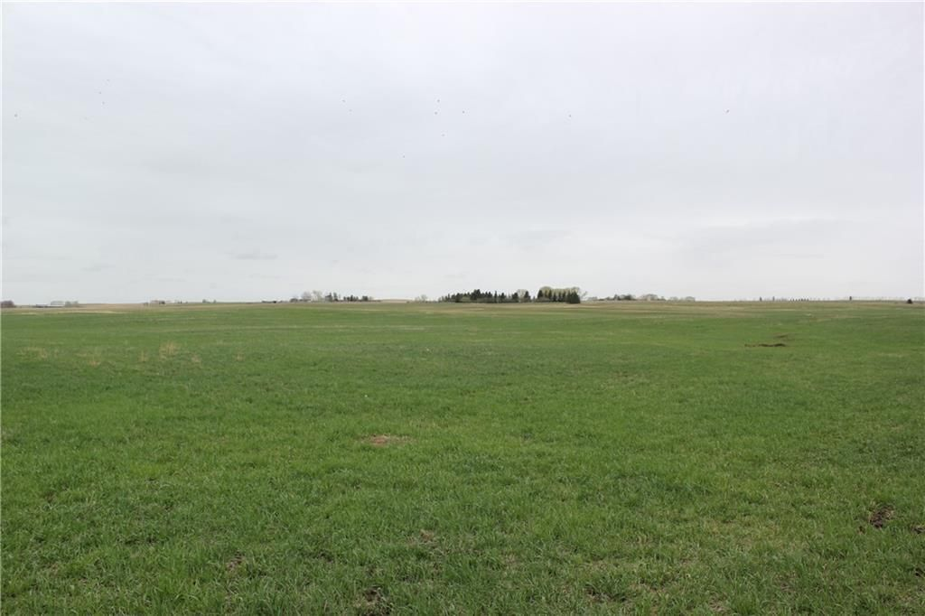 Main Photo: On Highway 567 in Rural Rocky View County: Rural Rocky View MD Land for sale : MLS®# C4233359