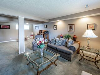 Photo 20: 223 Tanner Drive SE: Airdrie Detached for sale : MLS®# A1101335