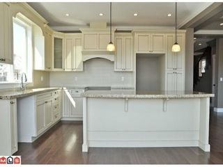 Photo 6: 8108 211TH Street in Langley: Willoughby Heights Home for sale ()  : MLS®# F1204222