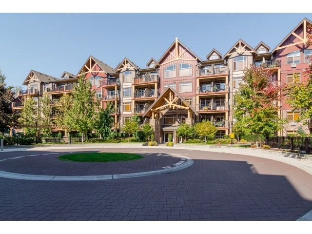 """Main Photo: 368 8328 207A Street in Langley: Willoughby Heights Condo for sale in """"Yorkson Creek"""" : MLS®# R2005017"""