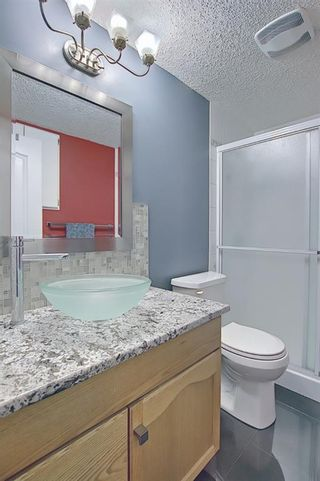 Photo 42: 328 Templeton Circle NE in Calgary: Temple Detached for sale : MLS®# A1074791