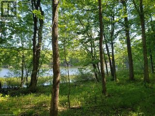 Photo 19: 8801 SEVERN RIVER in Orillia: Vacant Land for sale : MLS®# 40120545