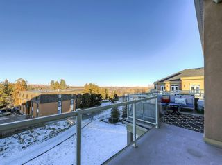 Photo 22: 404 2 HEMLOCK Crescent SW in Calgary: Spruce Cliff Apartment for sale : MLS®# A1061212