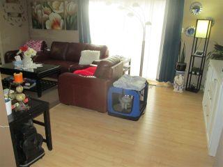 Photo 7: 10542 70 Avenue in Edmonton: Zone 15 House Fourplex for sale : MLS®# E4237206
