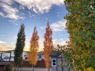 Photo 3: 1212 2nd Street NE: Sundre Detached for sale : MLS®# A1050374