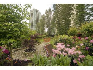 Photo 18: # 508 4425 HALIFAX ST in Burnaby: Brentwood Park Condo for sale (Burnaby North)  : MLS®# V1125998