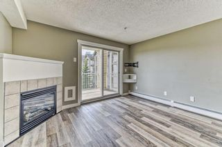 Photo 10: 337 1717 60 Street SE in Calgary: Red Carpet Apartment for sale : MLS®# A1067174