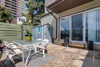 Photo 30: 5C MEADOWLARK Village in Edmonton: Zone 22 Townhouse for sale : MLS®# E4244170