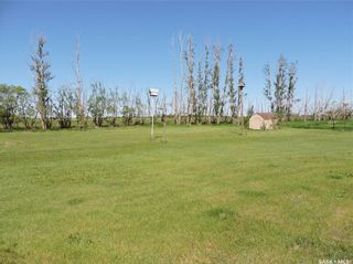 Photo 5: Walker Acreage in Orkney: Residential for sale (Orkney Rm No. 244)  : MLS®# SK859515