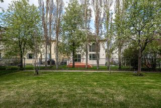 Photo 36: 637 Hamptons Drive NW in Calgary: Hamptons Detached for sale : MLS®# A1112624
