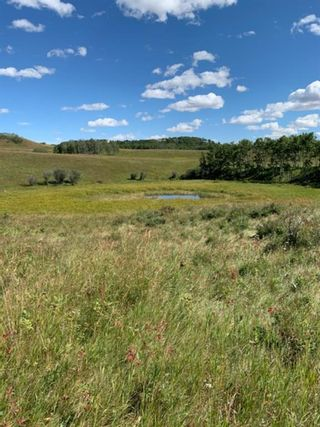 Photo 11: NONE-192 St W and 274 Ave W-Rural Foothills County-