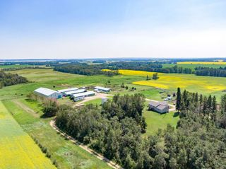 Photo 18: 461017A RR 262: Rural Wetaskiwin County House for sale : MLS®# E4255011