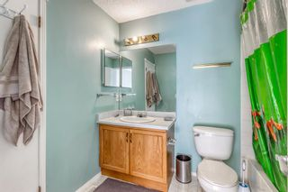 Photo 19: 38 Coverdale Way NE in Calgary: Coventry Hills Detached for sale : MLS®# A1120881
