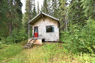 Photo 20: 1225 AVELING COALMINE Road in Smithers: Smithers - Rural House for sale (Smithers And Area (Zone 54))  : MLS®# R2607586