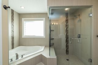 Photo 34: 2007 BLUE JAY Court in Edmonton: Zone 59 House for sale : MLS®# E4262186