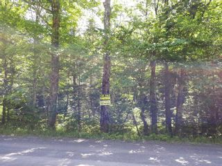 Photo 11: Meiklefield Road in Meiklefield: 108-Rural Pictou County Vacant Land for sale (Northern Region)  : MLS®# 202117504