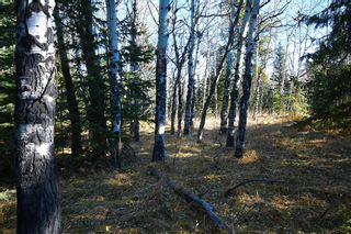 Photo 34: 20.02 Acres +/- NW of Cochrane in Rural Rocky View County: Rural Rocky View MD Land for sale : MLS®# A1065950