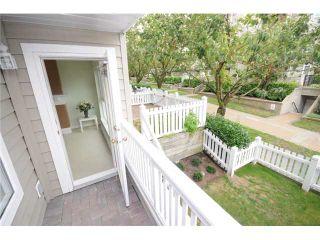 Photo 8: 113 5900 DOVER Crescent in Richmond: Riverdale RI Condo for sale : MLS®# V905708