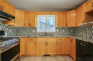 Photo 16: 60 EDENWOLD Green NW in Calgary: Edgemont House for sale : MLS®# C4160613