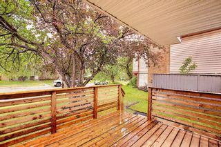 Photo 40: 428 Queensland Place SE in Calgary: Queensland Detached for sale : MLS®# A1123747