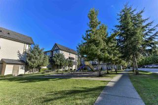 """Photo 29: 156 20875 80 Avenue in Langley: Willoughby Heights Townhouse for sale in """"Pepperwood"""" : MLS®# R2493319"""