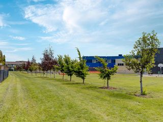 Photo 28: 1845 Reunion Terrace NW: Airdrie Detached for sale : MLS®# A1044124