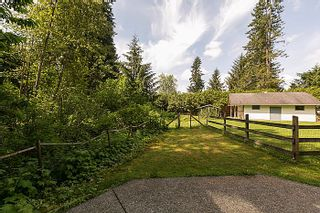 Photo 5: 25990 116TH Avenue in Maple Ridge: Websters Corners House for sale : MLS®# V1097441