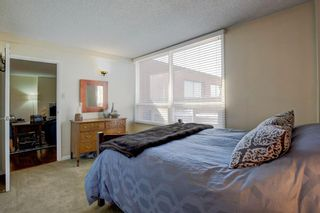 Photo 20: 403 1505 8 Avenue NW in Calgary: Hillhurst Apartment for sale : MLS®# A1123408