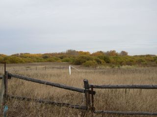 Photo 28: 55101 RR 270: Rural Sturgeon County Rural Land/Vacant Lot for sale : MLS®# E4265205