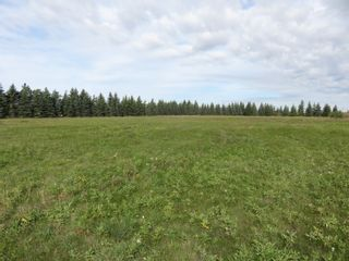 Photo 16: 0 Centreline Road: RM Springfield Vacant Land for sale (R04)  : MLS®# 202103923