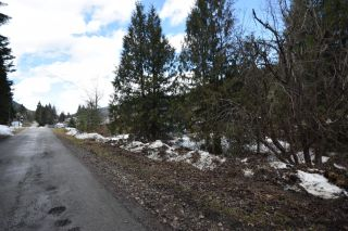 Photo 7: Lots 9&10 2ND AVENUE in Ymir: Vacant Land for sale : MLS®# 2453913