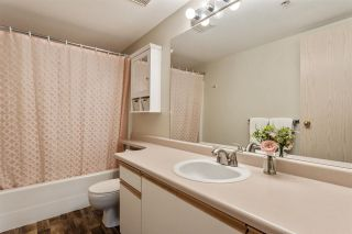 """Photo 18: 208 20881 56 Avenue in Langley: Langley City Condo for sale in """"Robert's Court"""" : MLS®# R2576787"""