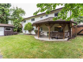 """Photo 19: 3633 BURNSIDE Drive in Abbotsford: Abbotsford East House for sale in """"SANDY HILL"""" : MLS®# R2274309"""