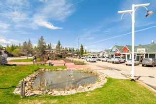 Photo 48: 143 CRYSTAL SPRINGS Drive: Rural Wetaskiwin County House for sale : MLS®# E4247412