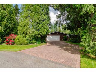 Photo 6: 4848 246A Street in Langley: Salmon River House for sale : MLS®# R2530745