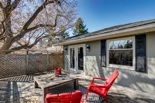 Photo 28: 436 38 Street SW in Calgary: Spruce Cliff Detached for sale : MLS®# A1091044