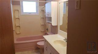 Photo 17: 202 Barron Drive in Winnipeg: Residential for sale (5G)  : MLS®# 1830044