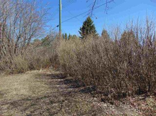 Photo 6: 4822 52 Avenue: Andrew Vacant Lot for sale : MLS®# E4242063