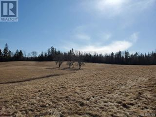 Photo 4: - Route 755 in Tower Hill: Vacant Land for sale : MLS®# NB055567