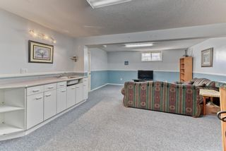 Photo 31: 424 Cole Crescent: Carseland Detached for sale : MLS®# A1106001