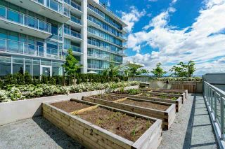 """Photo 32: 1401 258 NELSON'S Court in New Westminster: Sapperton Condo for sale in """"THE COLUMBIA"""" : MLS®# R2594061"""