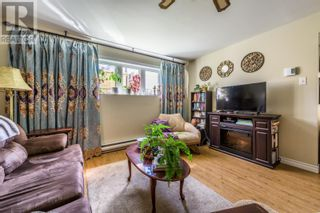 Photo 39: 4 Eaton Place in St. John's: House for sale : MLS®# 1237793