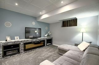 Photo 37: 82 Nolan Hill Drive NW in Calgary: Nolan Hill Detached for sale : MLS®# A1042013